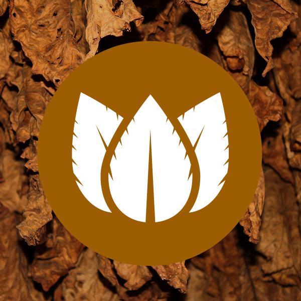Dart-Tobacco-Cartomizers-eliquid
